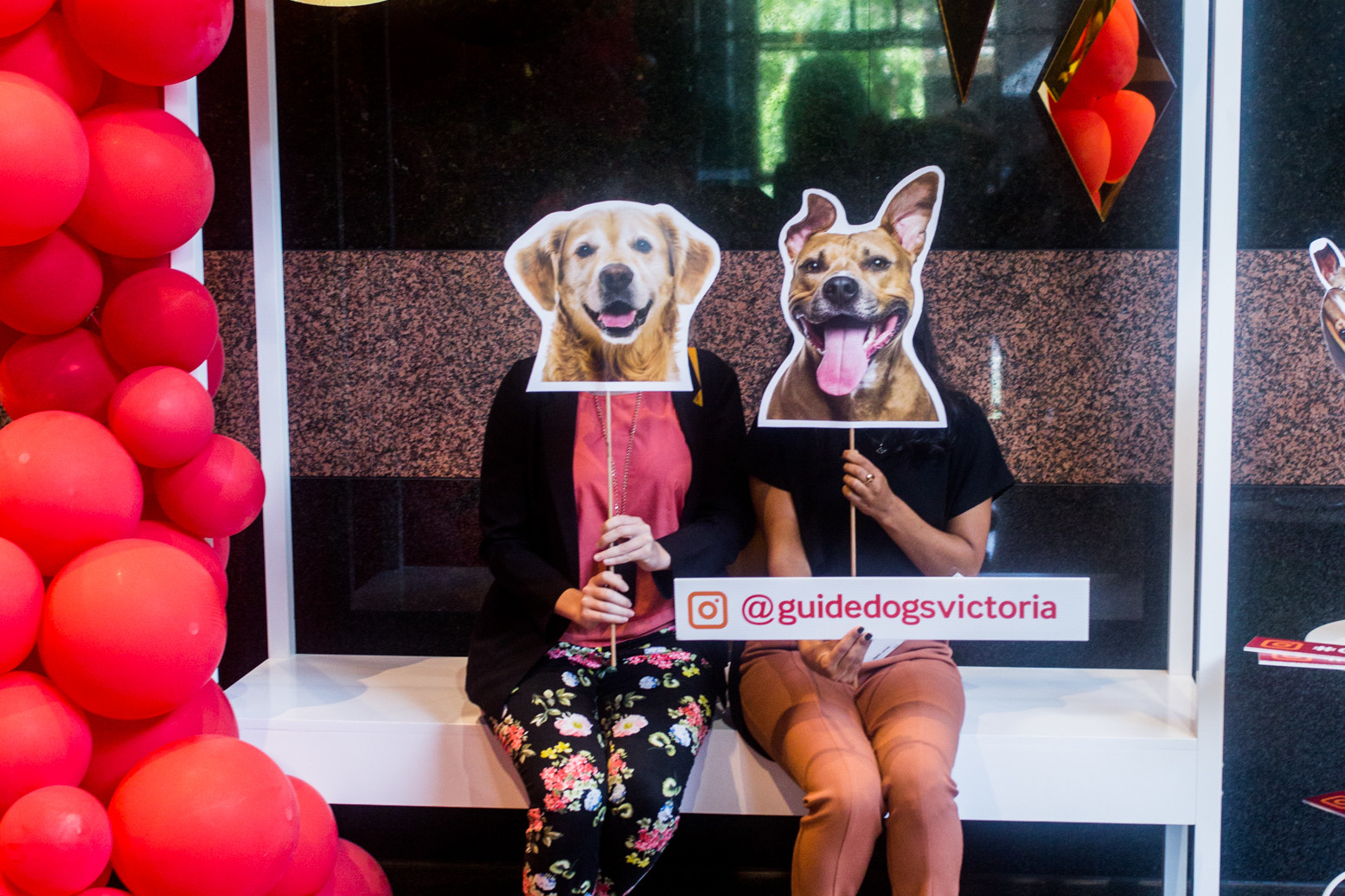Who Doesn't Love Dogs: Creating Community Engagement, ENGAGE