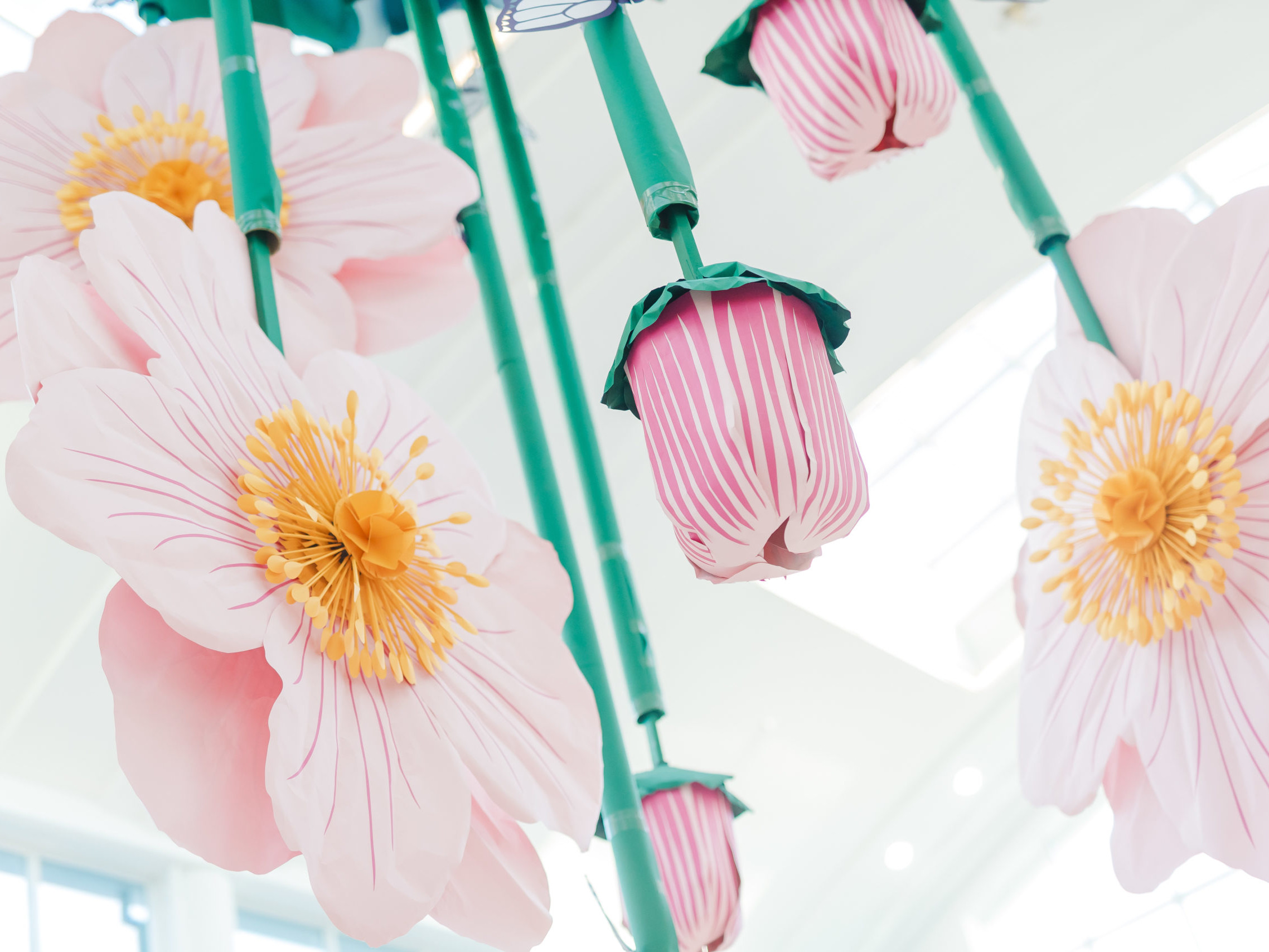 Grand Central: Twist On Carnival Of Flowers, ENGAGE
